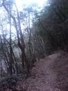 2006-geinnone
