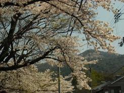 0408daimojiyama