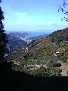 熊野古道紀州路。